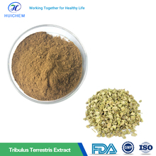 Factory Supply Tribulus Terrestris Extract Saponins 80% In Bulk