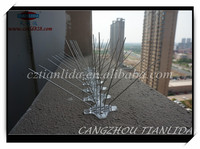 bird proofing /High Quality Bird Spikes/ Anti Bird Spike alibaba china supplier