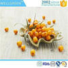 Wellgreen Supply Seabuckthorn extract, Freeze Dried Sea Buckthorn Juice
