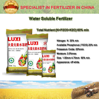 100% Watersoluble NPK fertilizer 20-20-20 NPK