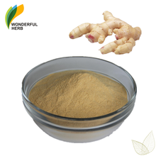 Water soluble dry zingiber officinale powder gingerol organic ginger extract