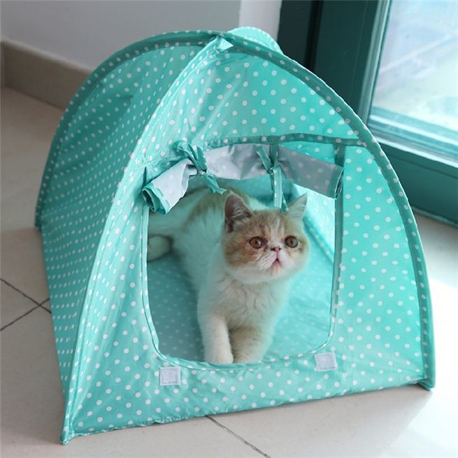 fashional home pet tent shelter