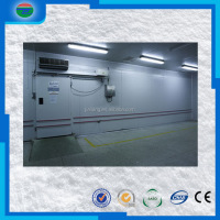 New Arrival fast Delivery motor scrap deep freezer cold room