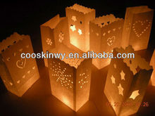 Different design colored luminary candle bags