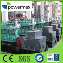1MW biomass gas generator set for power plant with CHP