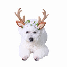 2017 spring new product stock pet Christmas supplies antlers head hoop dog hat