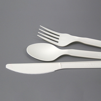 CPLA Biodegradable Disposable Plastic Cutlery Spoon And Fork