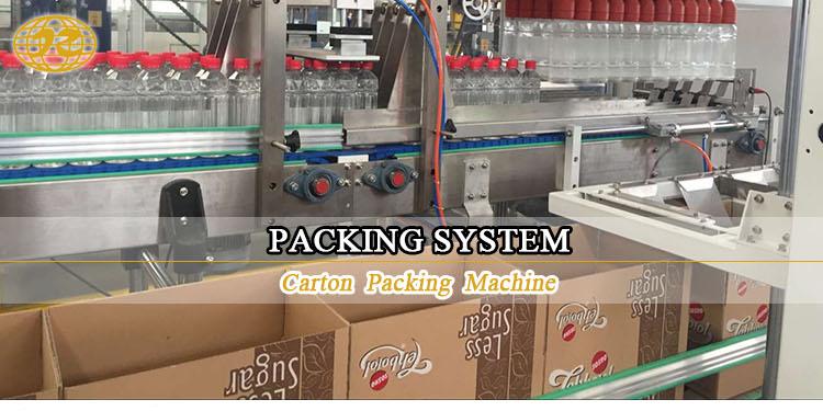 Carton-packing-machine_01.jpg