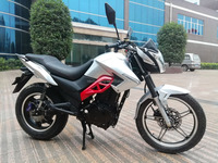 Puma 1000 electric motorcycle