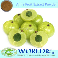 Factory 100% Natural Amla Extract Powder/Phyllanthus Emblica Extract/Phyllanthus Emblica Powder