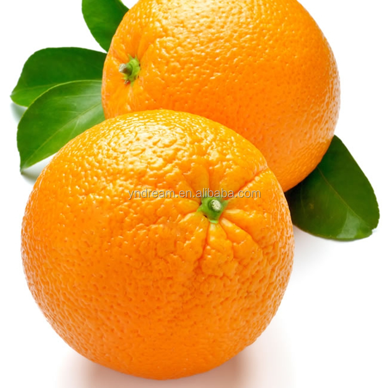Chinese best quality and sweet flavour fresh orange fruit wholesale