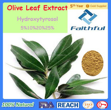 high quality and best price for customer / Olive Leaf Extract