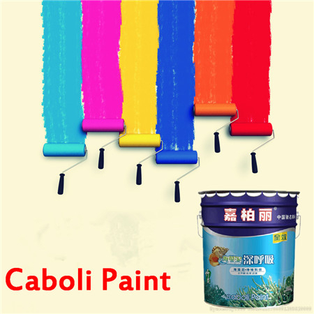 Caboli antifouling paint granite stone texture wall paint