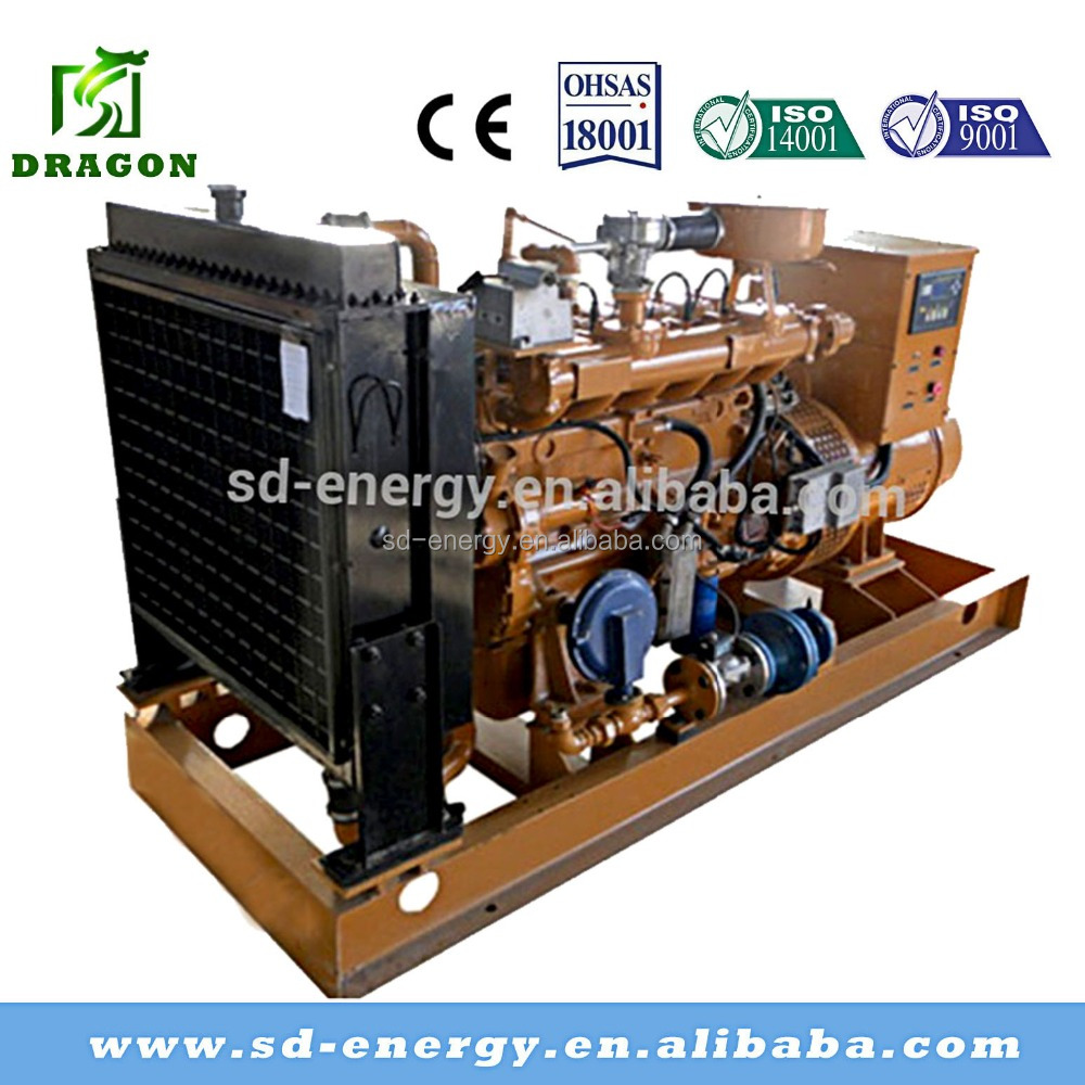 New Design 300KW Natural Gas Generator or Electric Power Plant