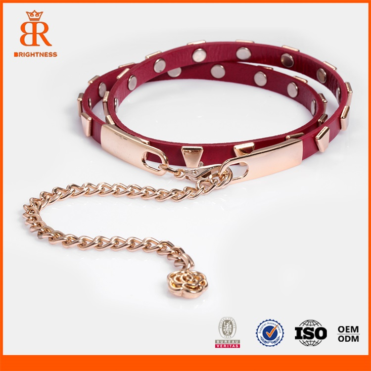 Gold Chain Buckles Belts Hook Buckle Waist Belts Metal Label Ladies Belts Waist