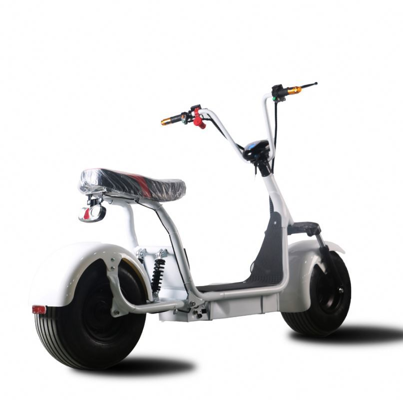1000W Chinese fat electric beach cruiser scooter with large LCD meter