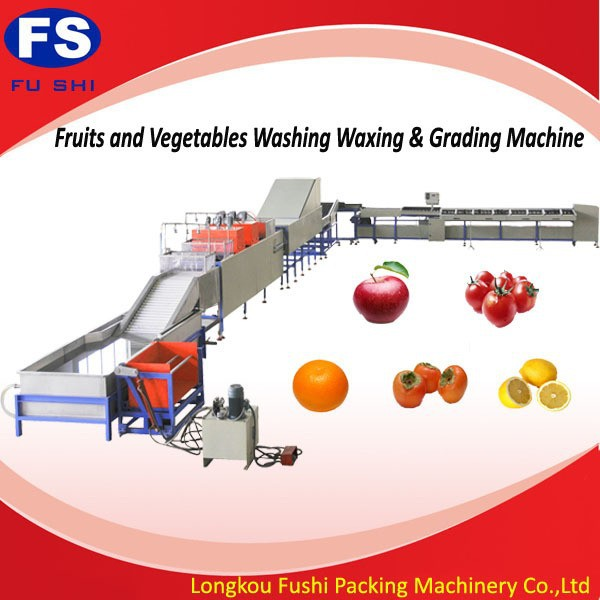 Hot Sale Fushi Brand CE and ISO 9001 fruit sorting machine , fruit cleaning waxing and sorting line