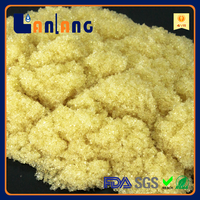 ultrapure water Mixed bed ion exchange resin DI resin