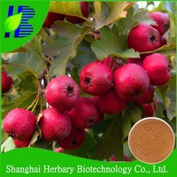 factory supply good price and high quality Hawthorne Leave Extract powder
