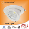 high brightness Epistar chip 30W gimbal led downlight