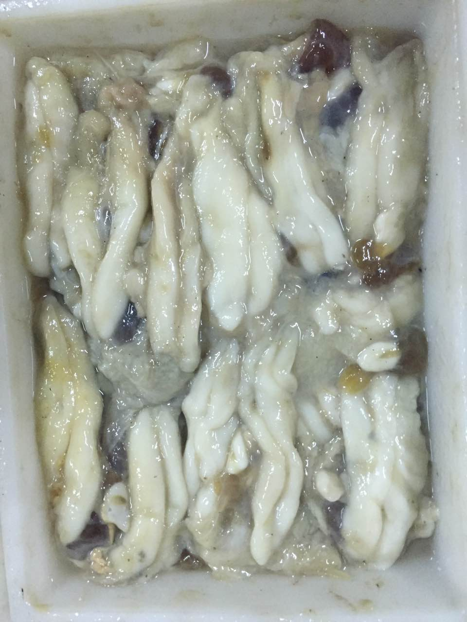 frozen todarodes /illex squid top quality frozen squid egg for sale
