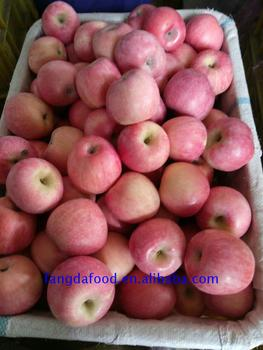 fuji apple for exporting