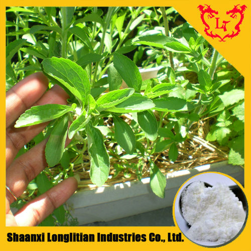 Hot Sale Stevia Extract Powder in Bulk / Stevia Rebaudiana (Bertoni)Hemsl