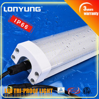 SAA approval IP65 0.6m/2ft Tri-proof LED Light 12v lamp 20w 30w submersible led light 12v waterproof ip68