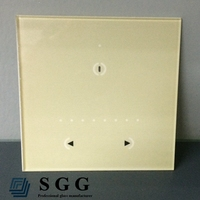 Top quality multifunction glass panels for lamp switch