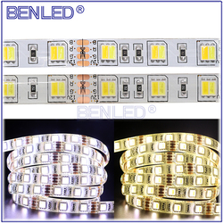 2 In 1 Chip Dual Color Dimmable 12V LED Fleixble Strip SMD 5050 CCT Adjustable