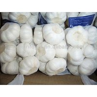 2013 Hot Sale chinese garlic sprouts