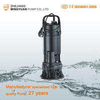 China Manufacturer Professional Water Pump WQ