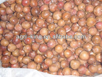 Grade A IQF Lychees Fruit Pulp