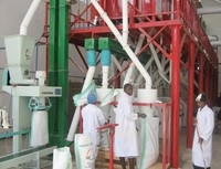 maize milling machines price 50ton per day/24hr maize degerminator and maize meal making machine