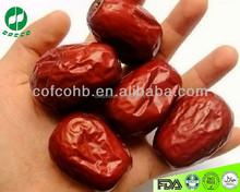 chinese dried red date