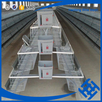 Alibaba express chicken egg poultry farm equipment
