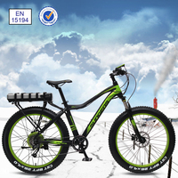 quality trendy 9-speed high power electric Fat bike high speed