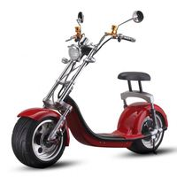48V lithium battery 350W adult foldable electric scooter motorcycle Citycoco motorcycle