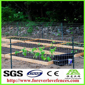 cheap easily assembled garden fence designs for farm used