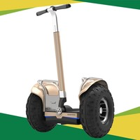 city bug electric scooter,electric scooter 19 inch for the young