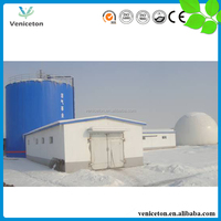 Veniceton Small size biogas plant for desulfurization chemicals hand operated diaphragm pump