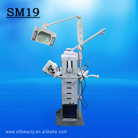 *2015*sw-19m hot sale 19 in 1 multifunction facial care machine