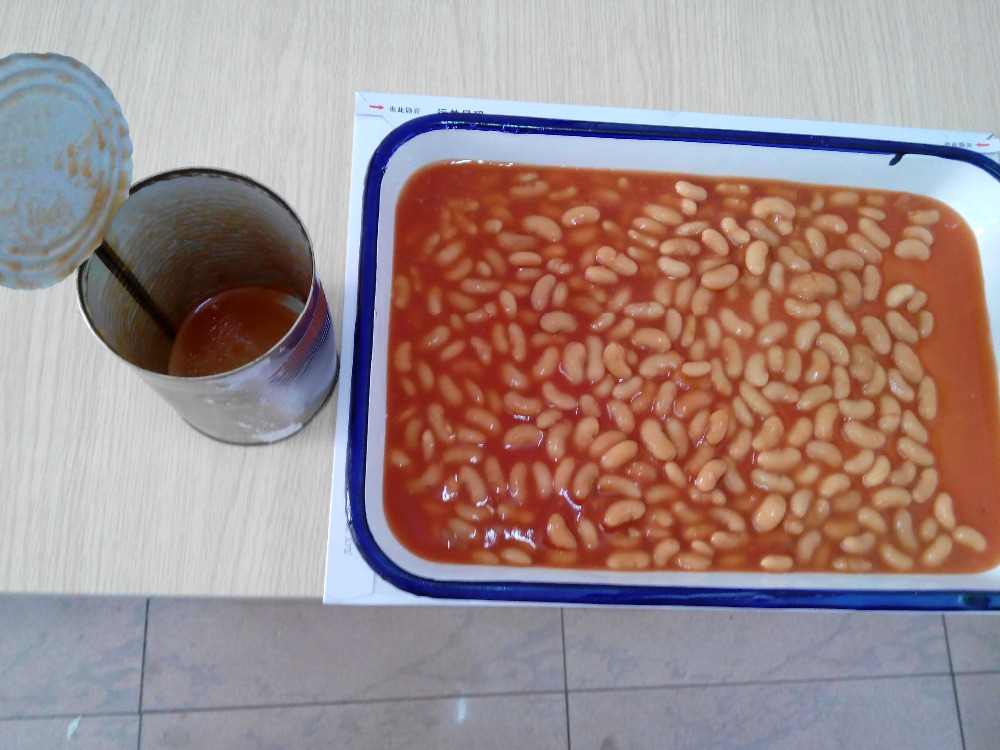 Good tasty canned white beans in tomato in season canned food supplier