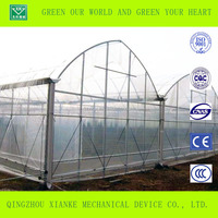Single Layer Agriculture And Commercial Polytunnel