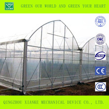 Single layer agriculture and commercial polytunnel greenhouses with low cost