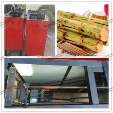 hot sale fresh home use sugarcane peeling machine//0086-13673629307