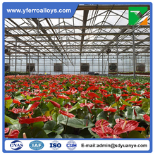 Tropical Climate Multi Span Flower Greenhouse