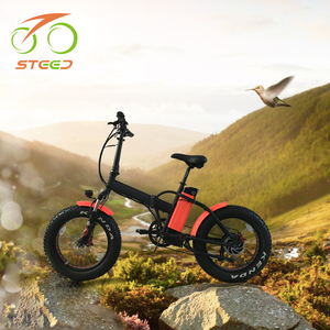 20 inch 48v 500w folding electric bike for off road using