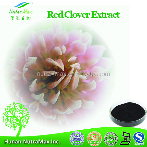 NutraMax Supply-Red Clover P.E., Red Clover P.E. 4:1, Natural Red Clover P.E.