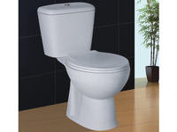 Mounted Toilet with R&T Concealed Cistern Soft Closing Cover